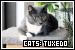 Cats: Tuxedo